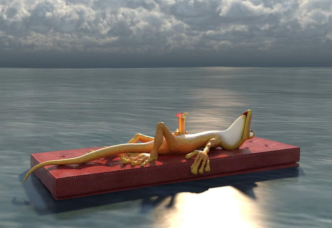 Frosch, See, Ausruhen, Wolken, Getränk, Relaxen, Luftmatratze, Feiertag, Tag der Arbeit